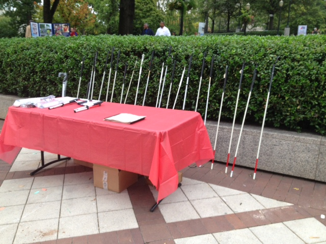 A line of white canes is on display at the 2013 walk
